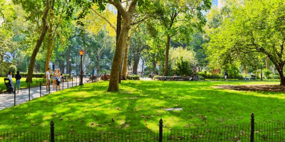 Thinking of Making an End-of-Year Donation? Consider Mad. Sq. Park